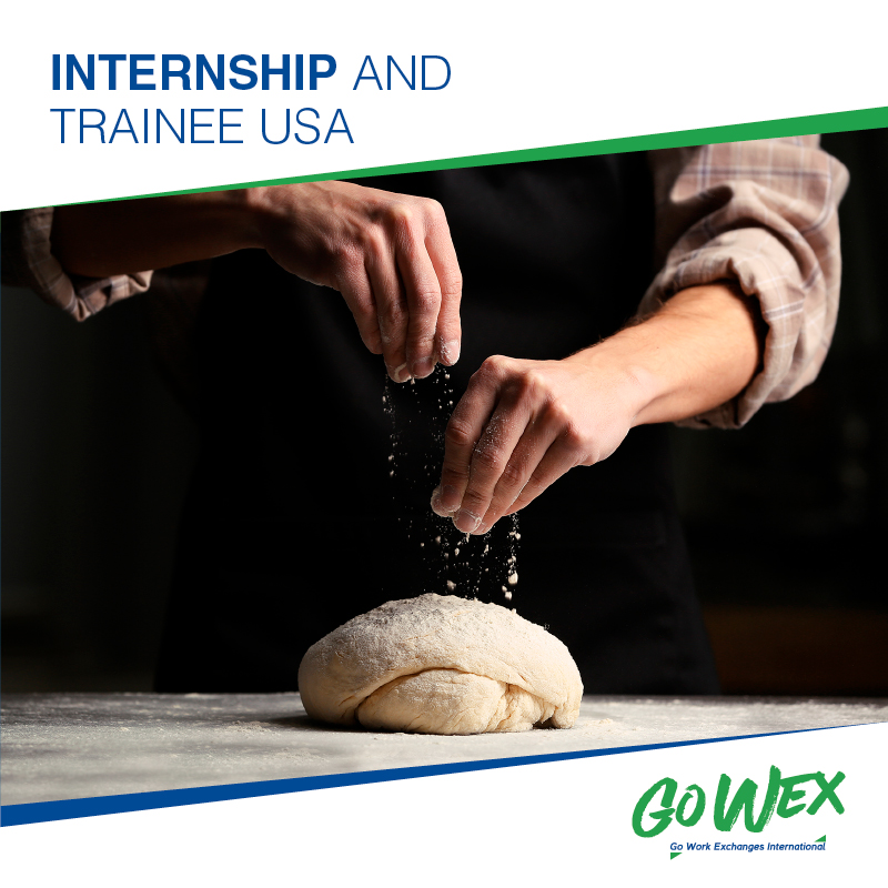 Internship and Trainee USA 2020